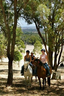 General - Waroona Riding Farm