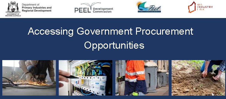 Accessing Government Procurement Opportunities